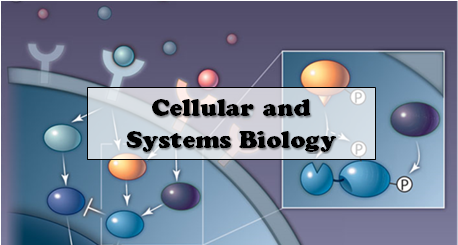 Cellular and Systems Biology=