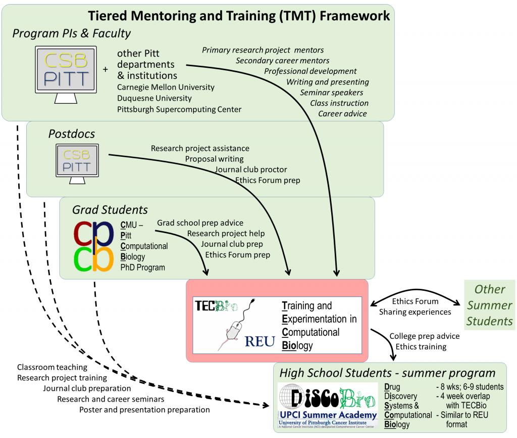 TMT graphic